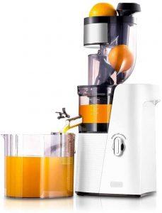 SKG Slow Masticating Juicer