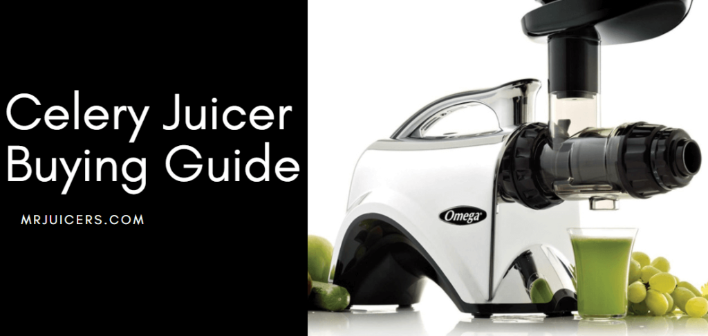 celery juicer buying guide
